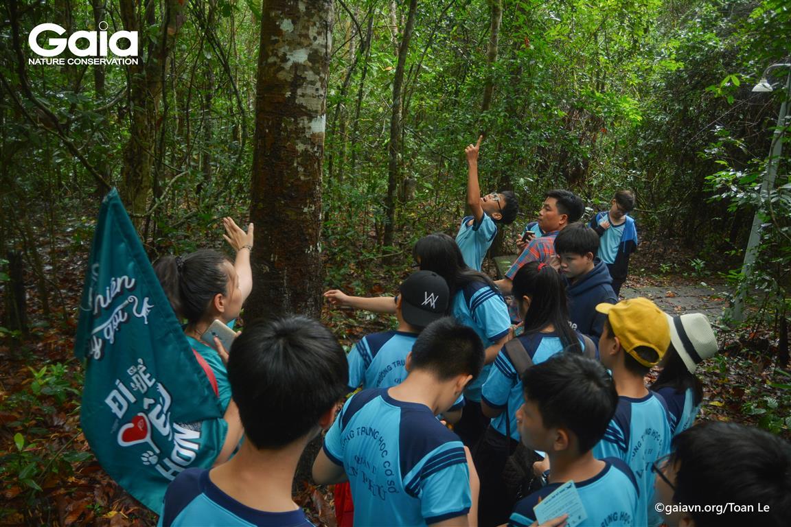 Tìm hiểu về rừng nhiệt đới ẩm
