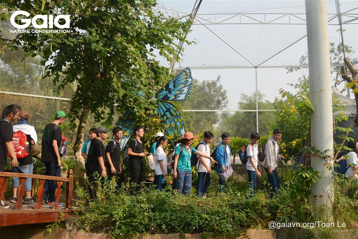 Tìm hiểu về vai trò của nước với loài bướm tại Khu Vườn Bướm.