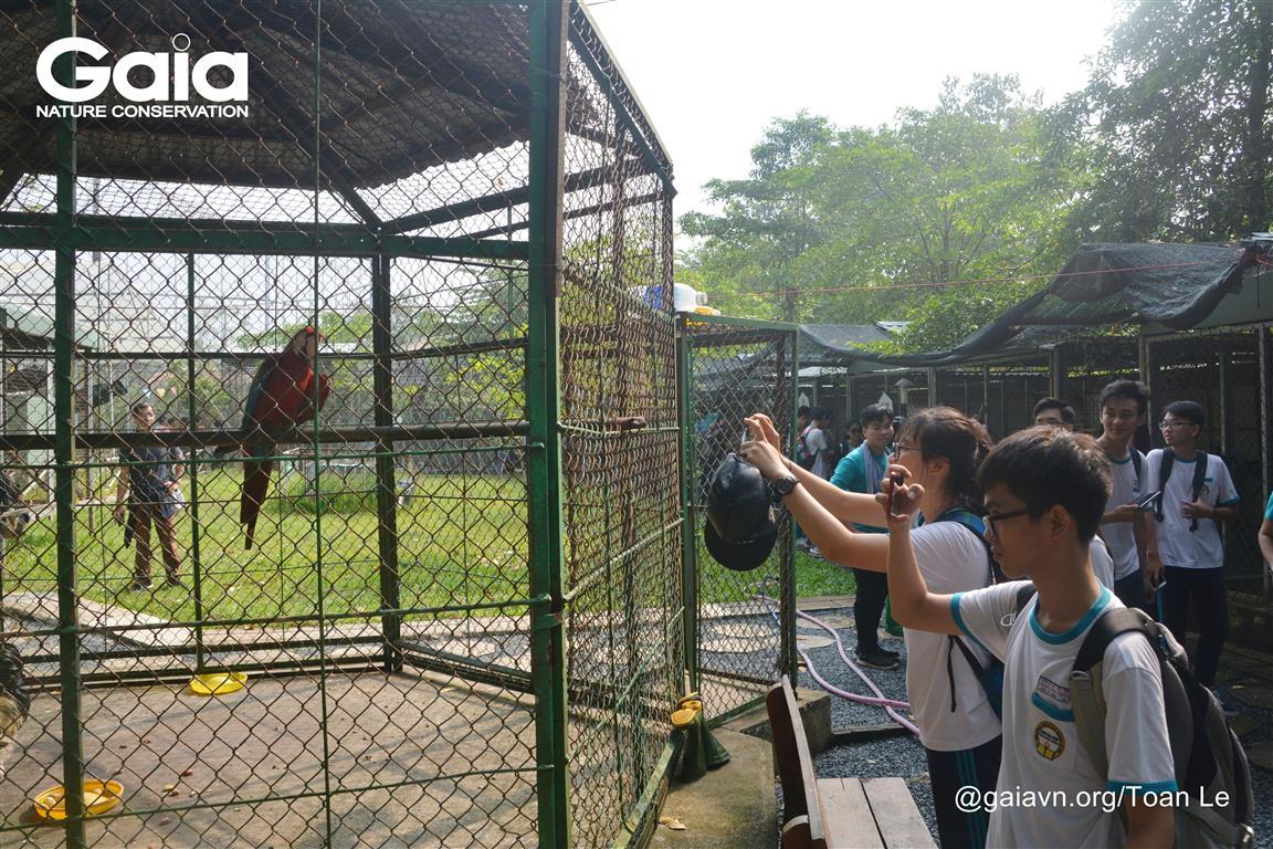 Tìm hiểu về vai trò của nước với động vật hoang dã tại Khu Vườn Thú.