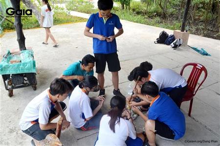 Các nhóm đã tích cực thực hành làm gạch sinh thái.