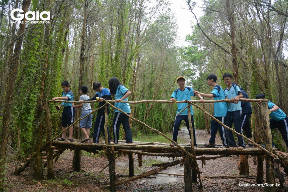 Thử thách vượt cầu khỉ