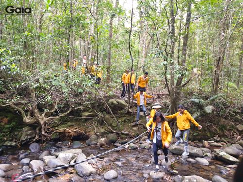 Trải nghiệm vượt suối giữa rừng nhiệt đới xanh mát