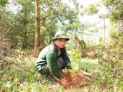 Người nông dân hỗ trợ trồng rừng chụp hình cùng cây giống