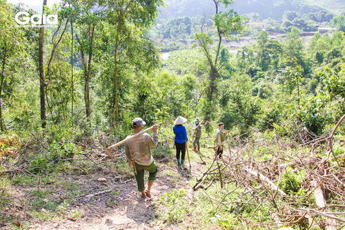 Người dân nô nức cùng nhau sẵn sàng trồng cây