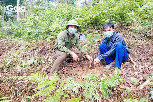 Anh Huyên - Một người dân địa phương đã dành hơn 10 năm cuộc đời để tham gia các hoạt động trồng rừng
