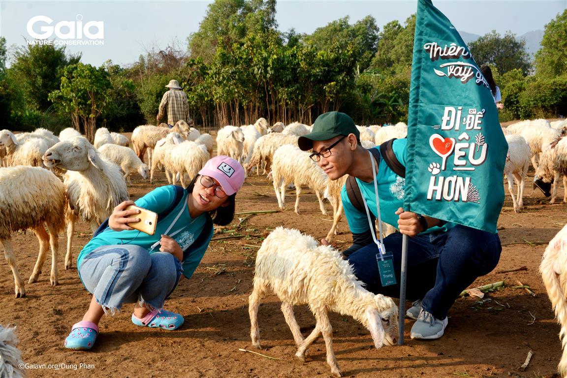 Tại Đồng Cừu Suối Nghệ.