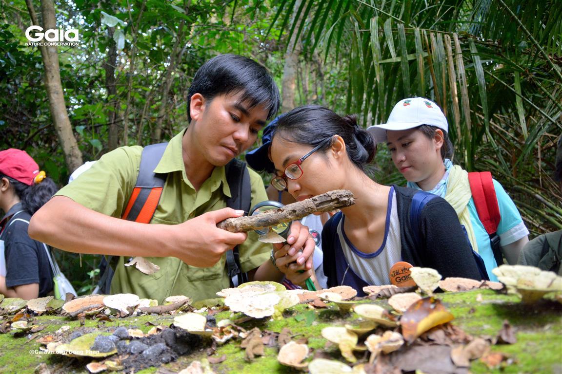Khám phá nấm tại Cát Tiên.