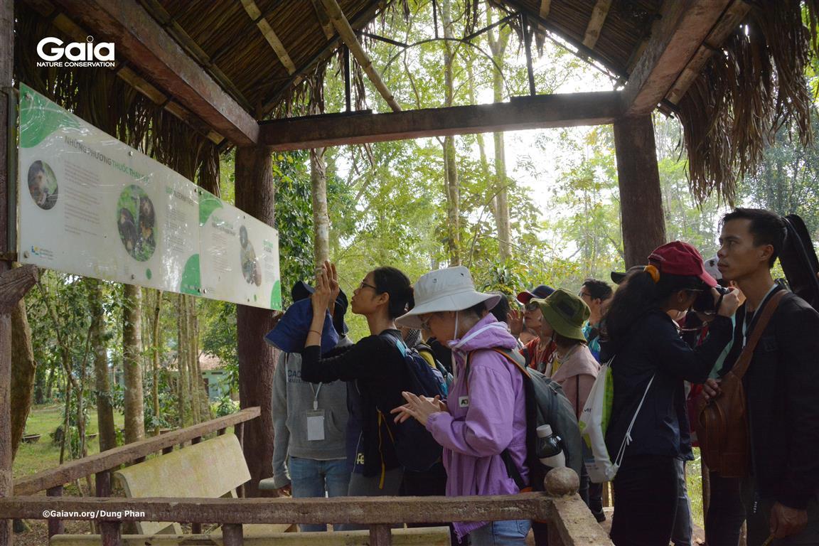 Tìm hiểu thông tin về các loài Gấu tại Việt Nam.