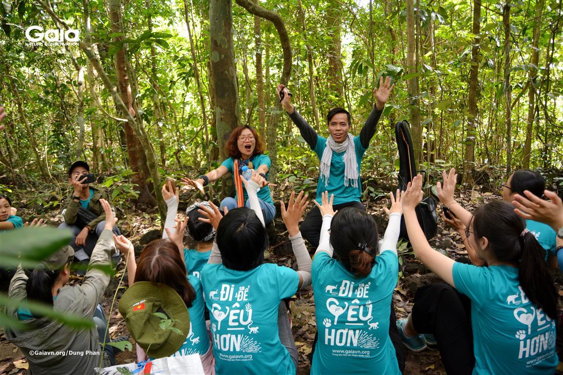 Một hoạt động trong rừng.