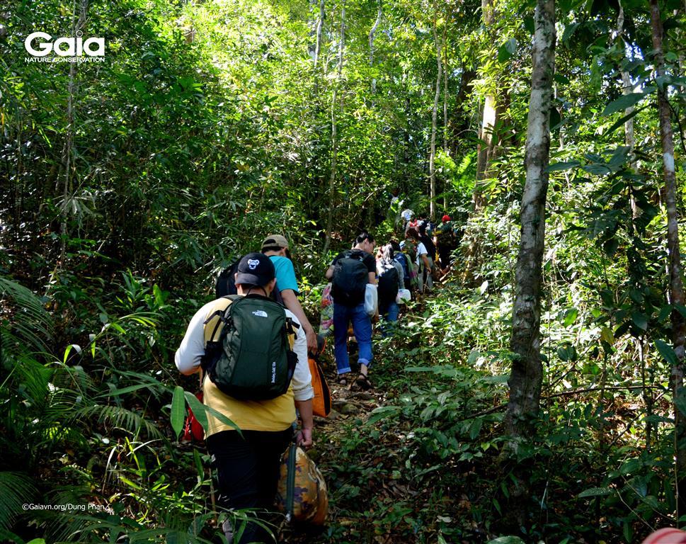 Băng rừng tại Vườn quốc gia Bù Gia Mập.