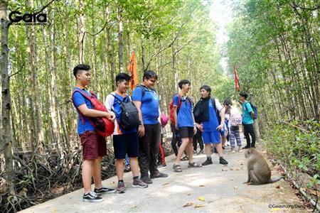Quan sát khỉ đuôi dài.