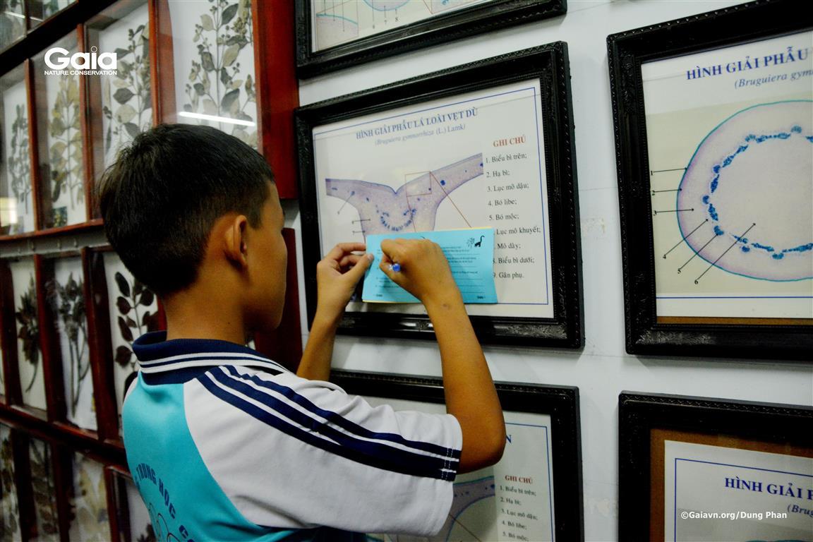 Học sinh xem phòng tiêu bản và hoàn thành bài tập thử thách.