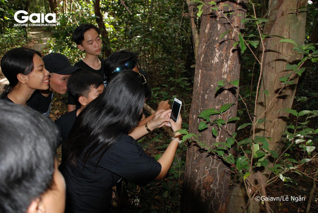Thử thách: chụp ảnh mối liên hệ giữa các yếu tố trong hệ sinh thái rừng
