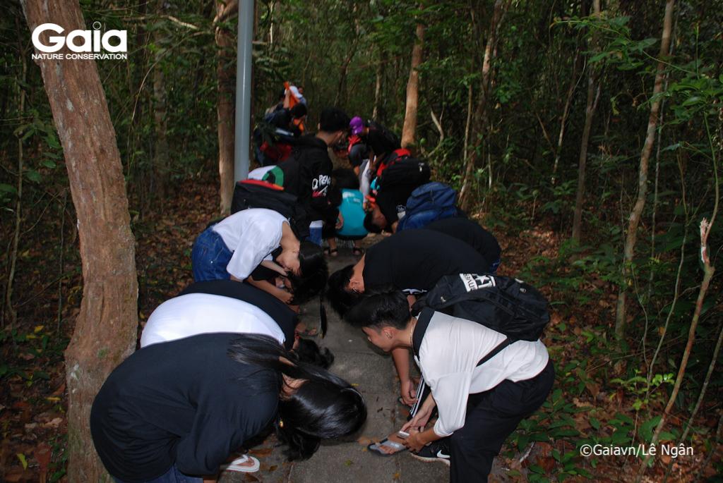 Học sinh quan sát rừng từ góc nhìn mới
