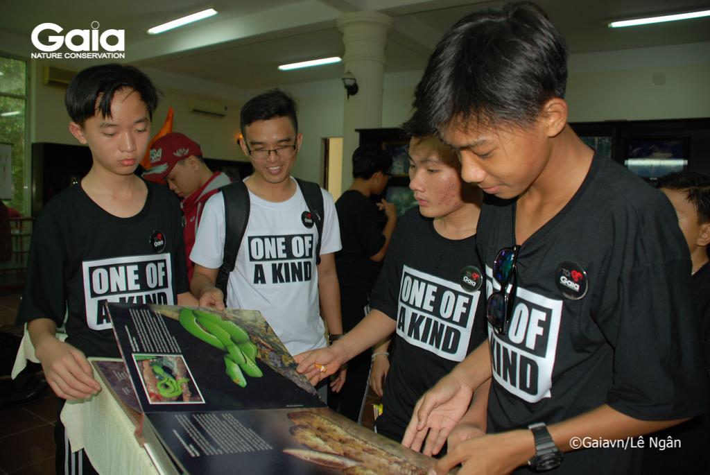 Học sinh tham quan phòng tiêu bản và tìm hiểu những loài động thực vật quý hiếm tại Khu bảo tồn Thiên nhiên Bình Châu Phước Bửu.