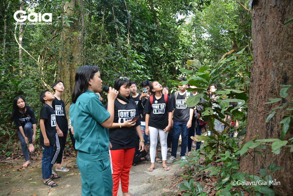 Học sinh tìm hiểu hệ sinh thái Rừng kín thường xanh mưa mùa nhiệt đới nửa rụng lá.