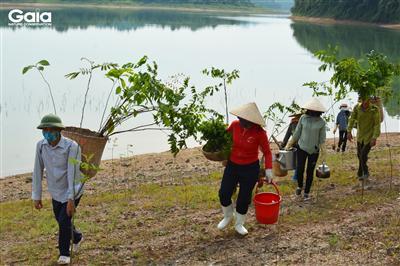 Khí thế đi trồng cây tại Vườn Quốc gia Bến En