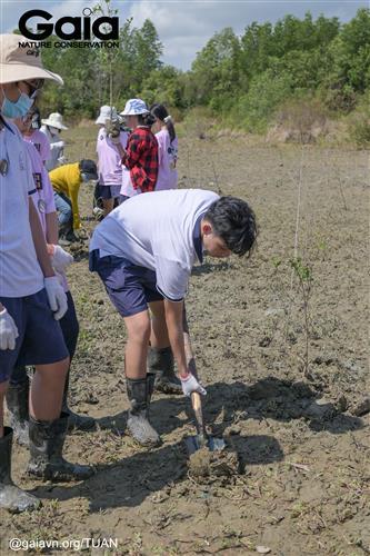 Tự tay xới đất trồng cây