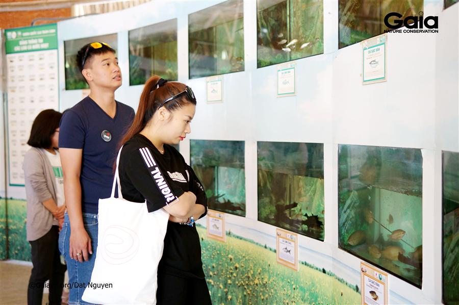 Say mê tìm hiểu cá nước ngọt Vườn Quốc gia Tràm Chim.