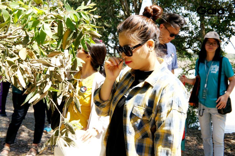 Hào hứng khám phá vỏ cây.