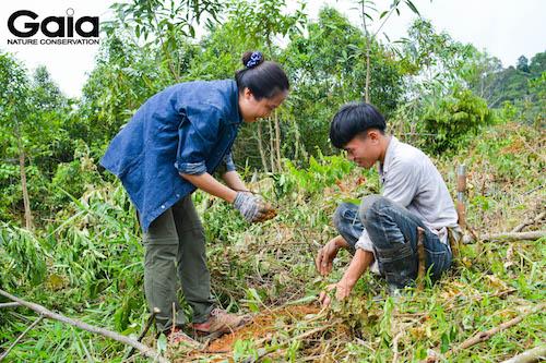 MC Thái Minh Châu trồng cây cùng người dân địa phương
