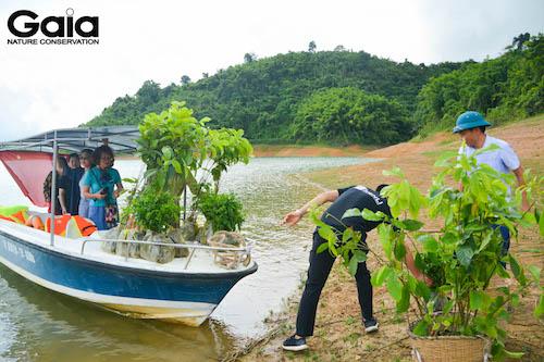 Nhân viên Kenli hào hứng bưng cây xuống thuyền