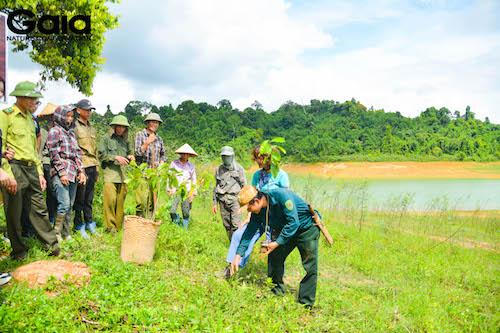 Bà Đỗ Thị Thanh Huyền hướng dẫn trồng cây cho mọi người