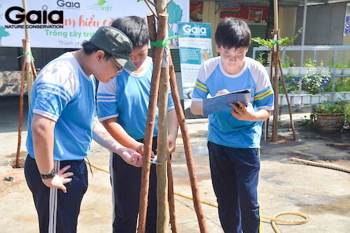 Học sinh tham gia giám sát cây trong trường
