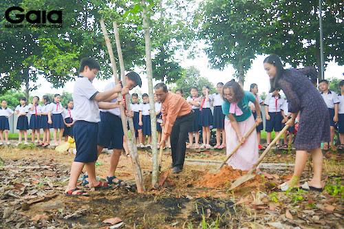 Giám đốc Gaia trồng cây mẫu cùng thầy Hiệu trường và Hiệu Phó của trường.