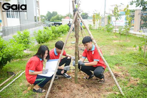 Các bạn học sinh tham gia giám sát cây sau khi trồng