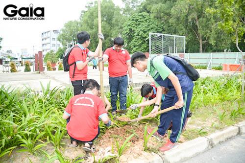 Các bạn học sinh lớp 11 đang trồng cây Kèn hồng