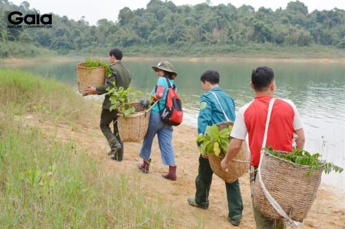 Khẩn trương vận chuyển cây giống đến điểm trồng rừng tại Vườn Quốc gia Bến En