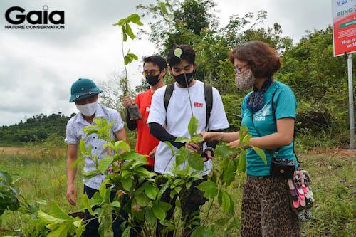 Chị Đỗ Thị Thanh Huyền - Giám đốc Gaia đang hướng dẫn trồng cây
