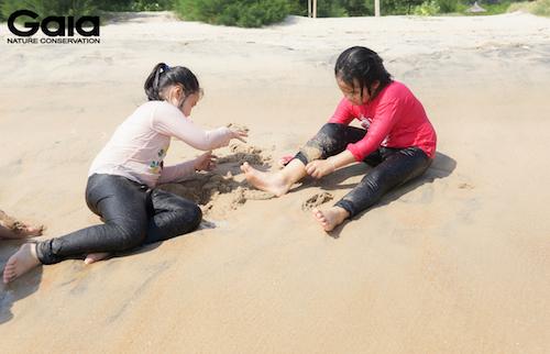 p cát hình động vật hoang dã