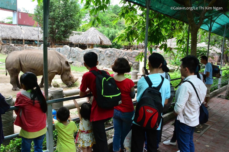 Tham quan và học tập về Tê giác