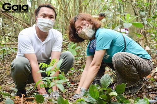 i diện Gaia và OMO cùng trồng rừng