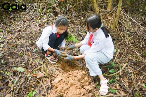 Học sinh trường THCS Thị trấn Bến Sung hào hứng trồng cây