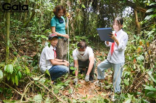 Giám sát cây vừa mới trồng