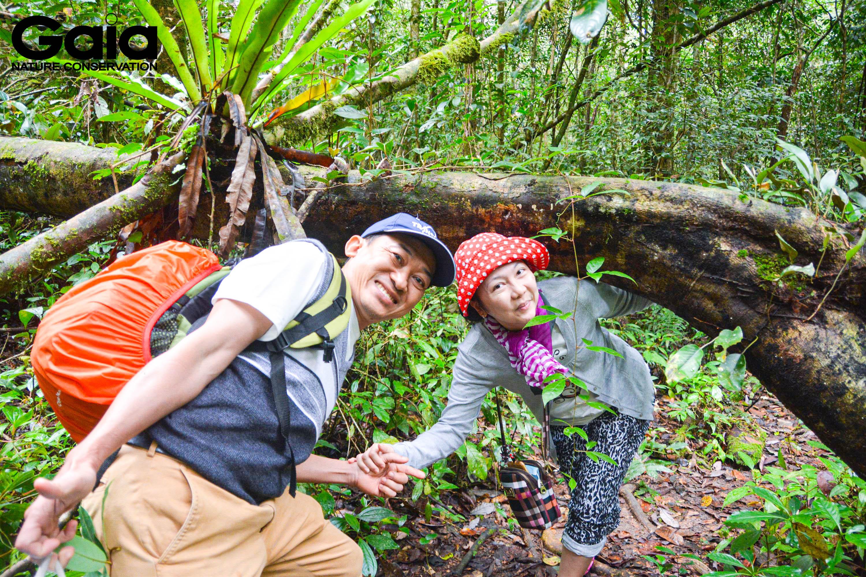 Vui vẻ băng rừng tuyến Đa dạng sinh học