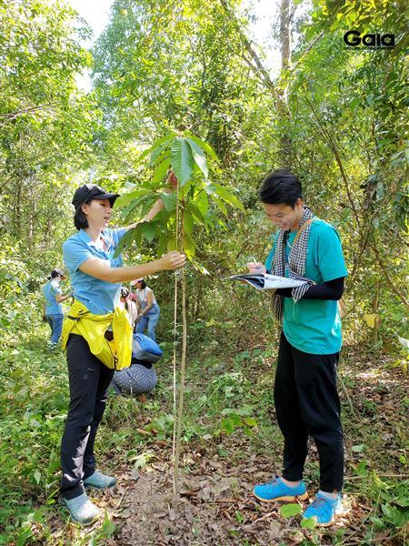 Hào hứng đo chiều cao, theo dõi sự sinh trưởng của cây.