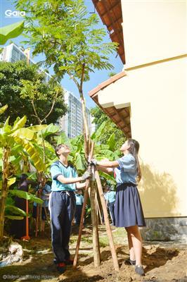 Hai em học sinh khối 8 vừa trồng xong một cây.