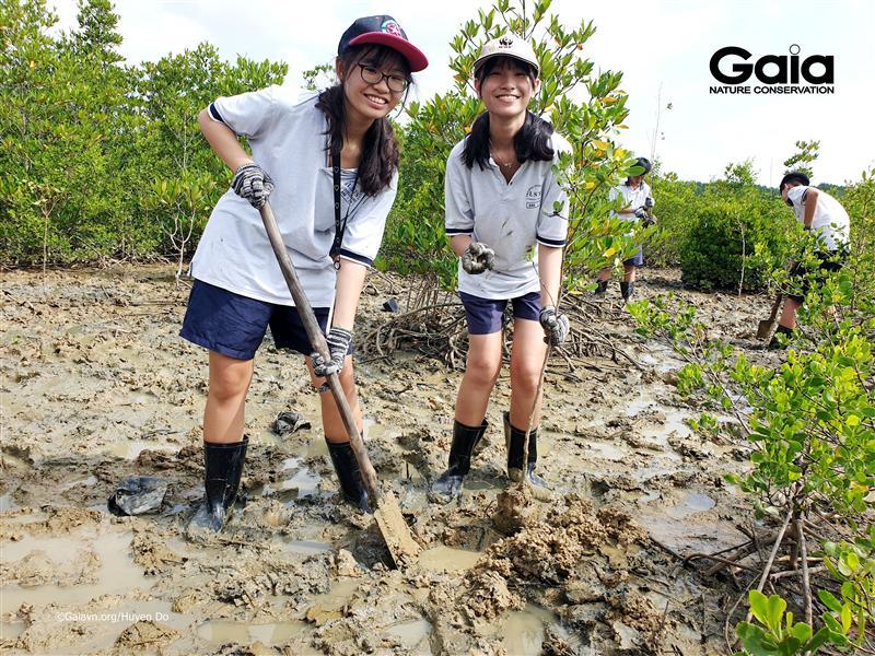 Hào hứng trồng rừng khôi phục hệ sinh thái rừng ngập mặn Cần Giờ.