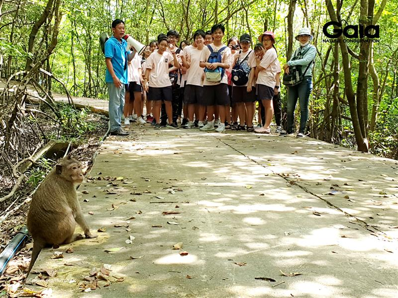 Tìm hiểu về Khỉ đuôi dài.