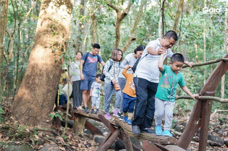 Trải nghiệm vượt cầu khỉ giữa rừng.