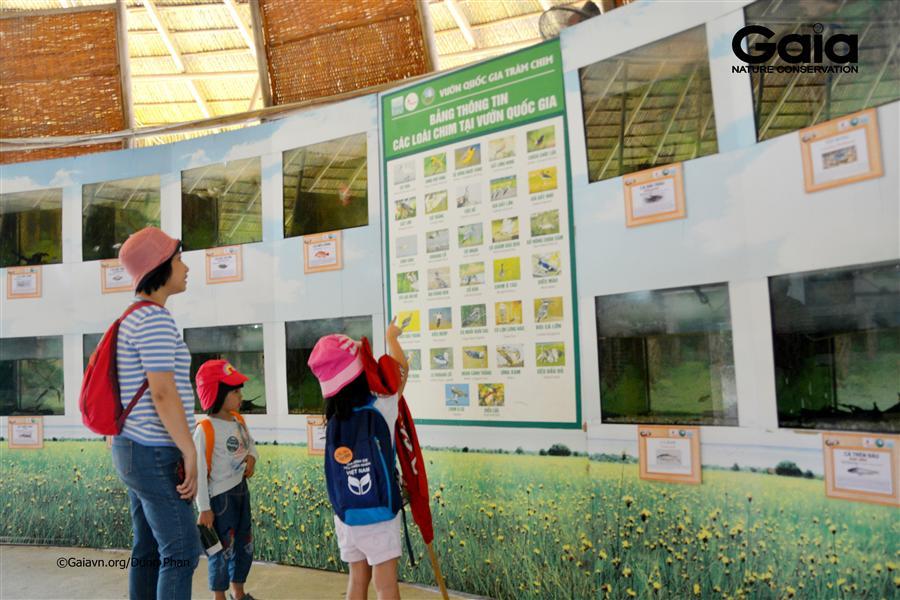 Tìm hiểu loài cá nước ngọt tại nhà trưng bày.