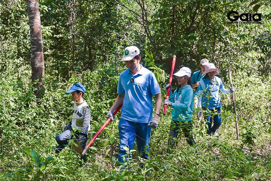 Hào hứng chăm sóc rừng.