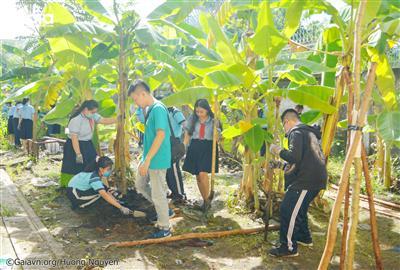 Gần 40 em học sinh tham gia vào hoạt động trồng cây.
