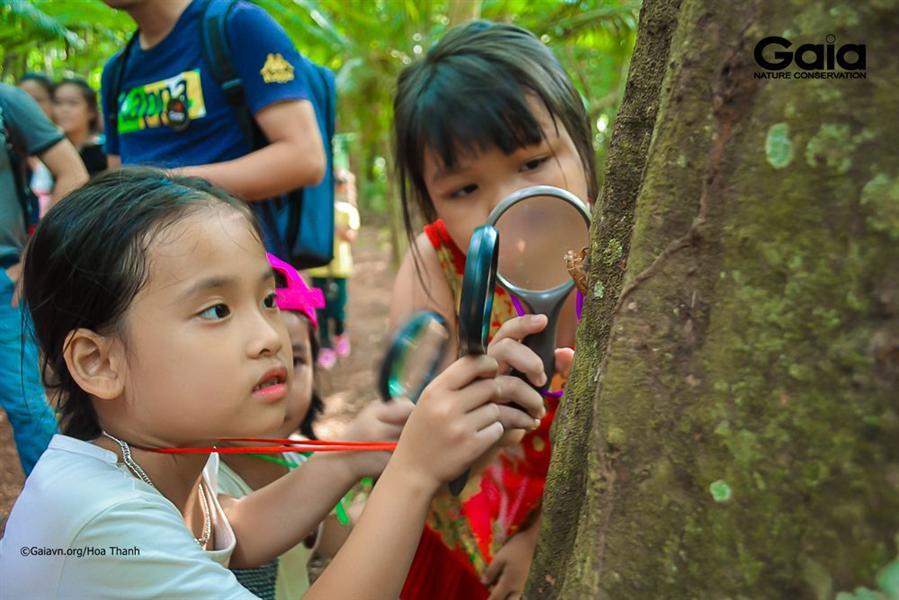 Quan sát sinh vật nhỏ bé qua kính lúp.