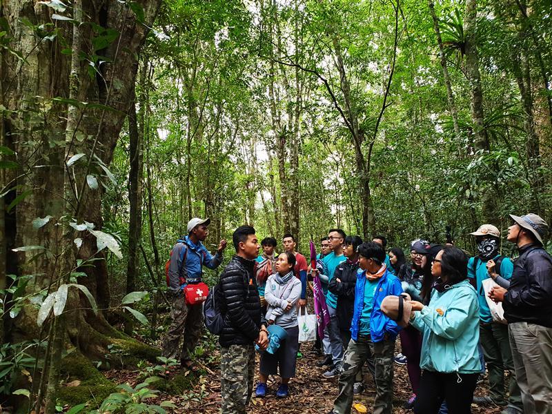 Chăm chú lắng nghe hướng dẫn về rừng.