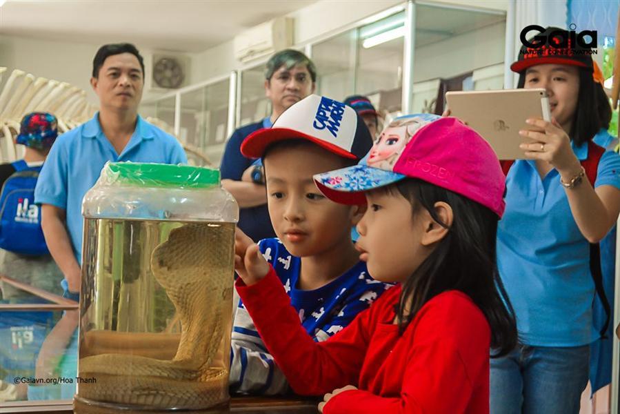 Tham quan mẫu vật tại nhà trưng bày.